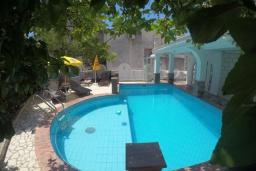 Бассейн. Черногория, Будва : Прекрасная вилла с бассейном и зеленым двориком, 13 спален, 13 ванных комнат, парковка, Wi-Fi