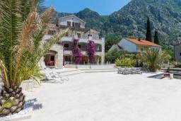 Фасад дома. Черногория, Рисан : Роскошная вилла с бассейном и видом на море, 7 спален, барбекю, Wi-Fi