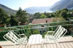Вид на море. Черногория, Рисан : Апартамент с отдельной спальней, с балконом с шикарным видом на море
