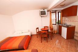Студия (гостиная+кухня). Черногория, Муо : Студия для 4 человек, с балконом с шикарным видом на море, 20 метров до пляжа