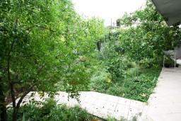 Терраса. Черногория, Доня Ластва : Студия с террасой возле моря