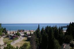 Вид на море. Montenegro 3* в Чани