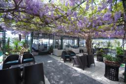 Кафе-ресторан. Obala Lux-2 4* в Будве