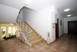 Лестница наверх. Residence Celebic-Radovic 3* в Будве