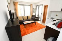 Гостиная. Черногория, Петровац : Современный апартамент с отдельной спальней, с балконом с видом на море