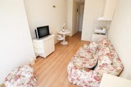 Гостиная. Черногория, Герцег-Нови : Люкс апартамент с отдельной спальней, с балконом с шикарным видом на море